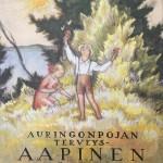 Arvo Ylppö toimitti Aurinkopojan terveysaapisen auttamaan taistelussa riisitautia vastaan. Runot kirjoitti Heikki Ojansuu, kuvituksen laati Rudolf Koivu.